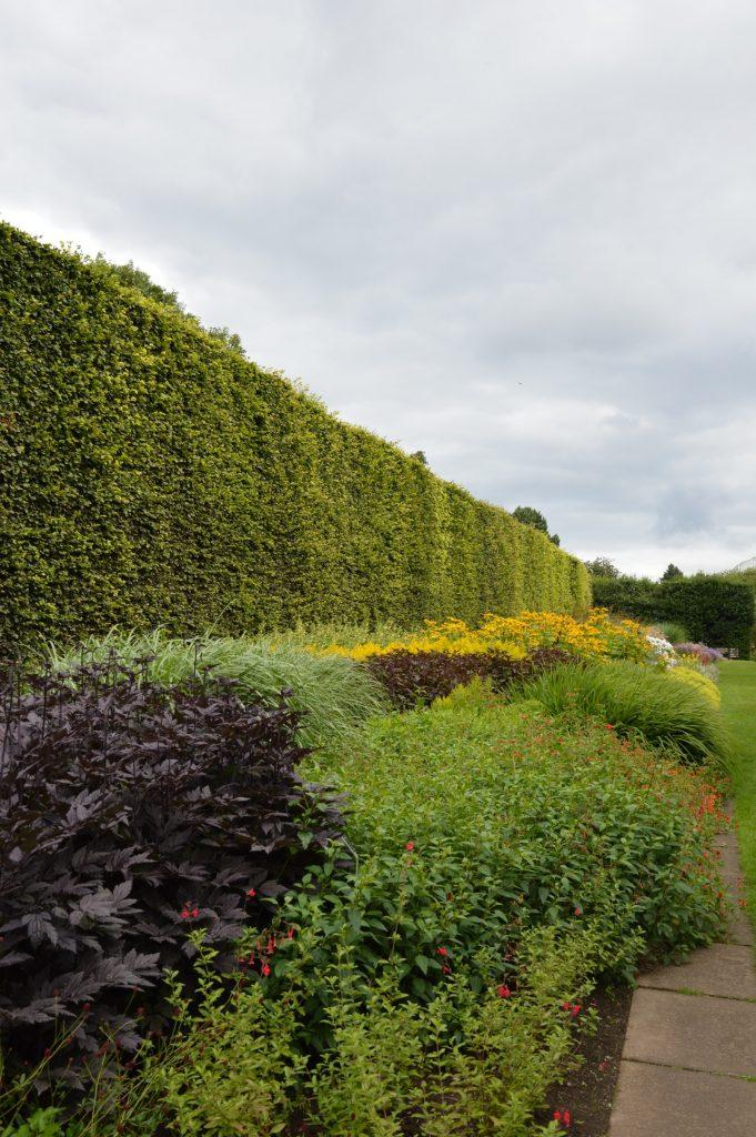 Botanical Gardens, Edinburgh, Scotland