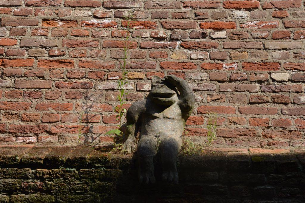 Frog, Binnendieze boat tour, Den Bosch, the Netherlands