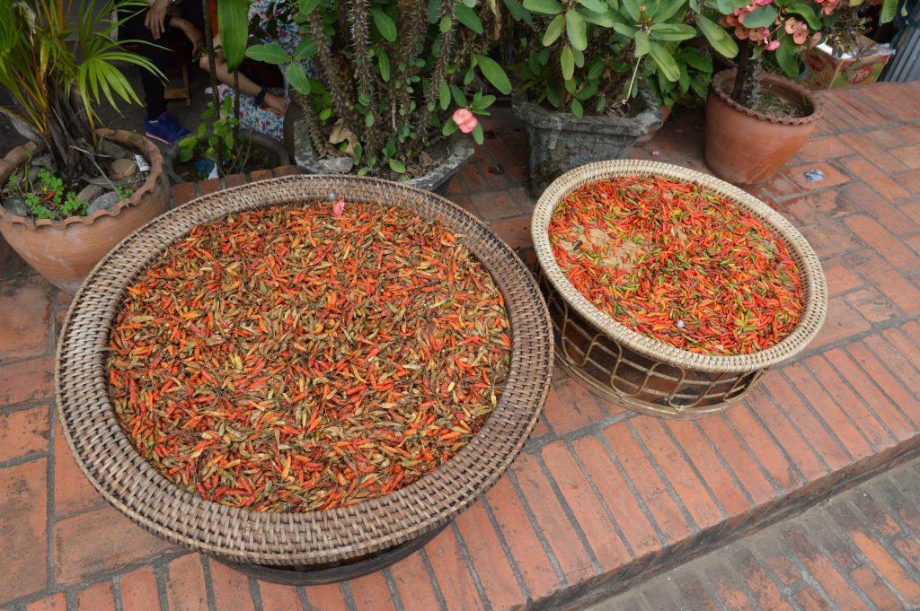 Laotian peppers in Luang Prabang