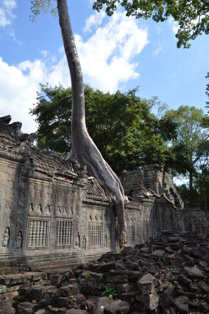Preah Khan, Angkor Archaeological Park, Cambodia