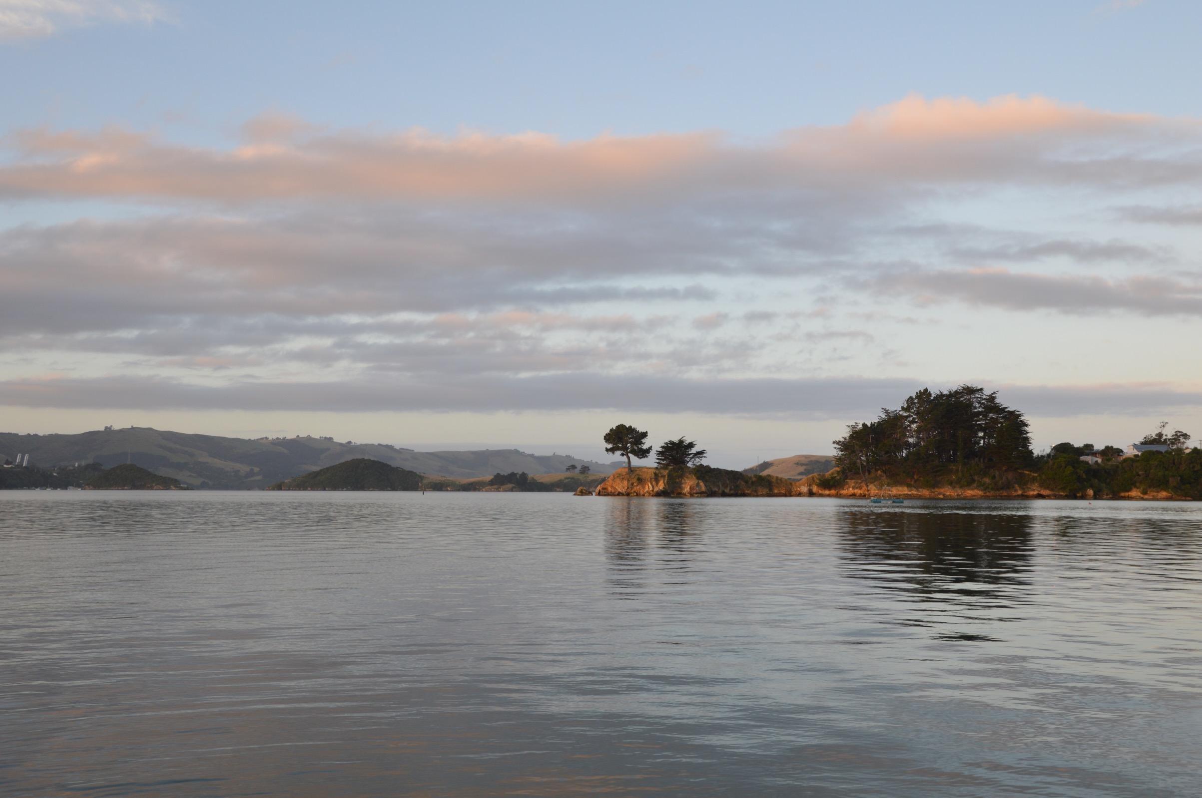Broad Bay, Otago Peninsula, New Zealand