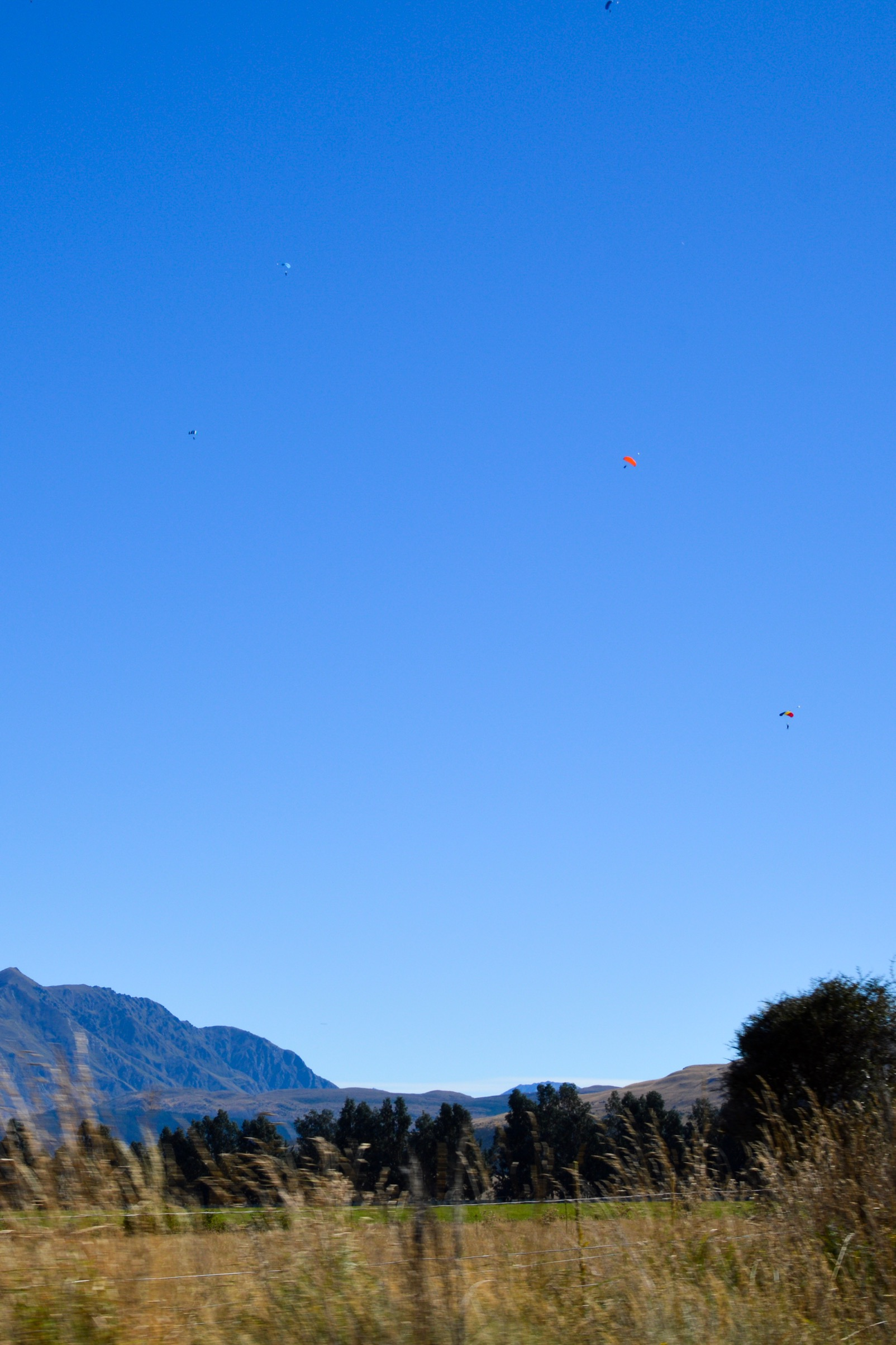 Skydivers, Queenstown, New Zealand