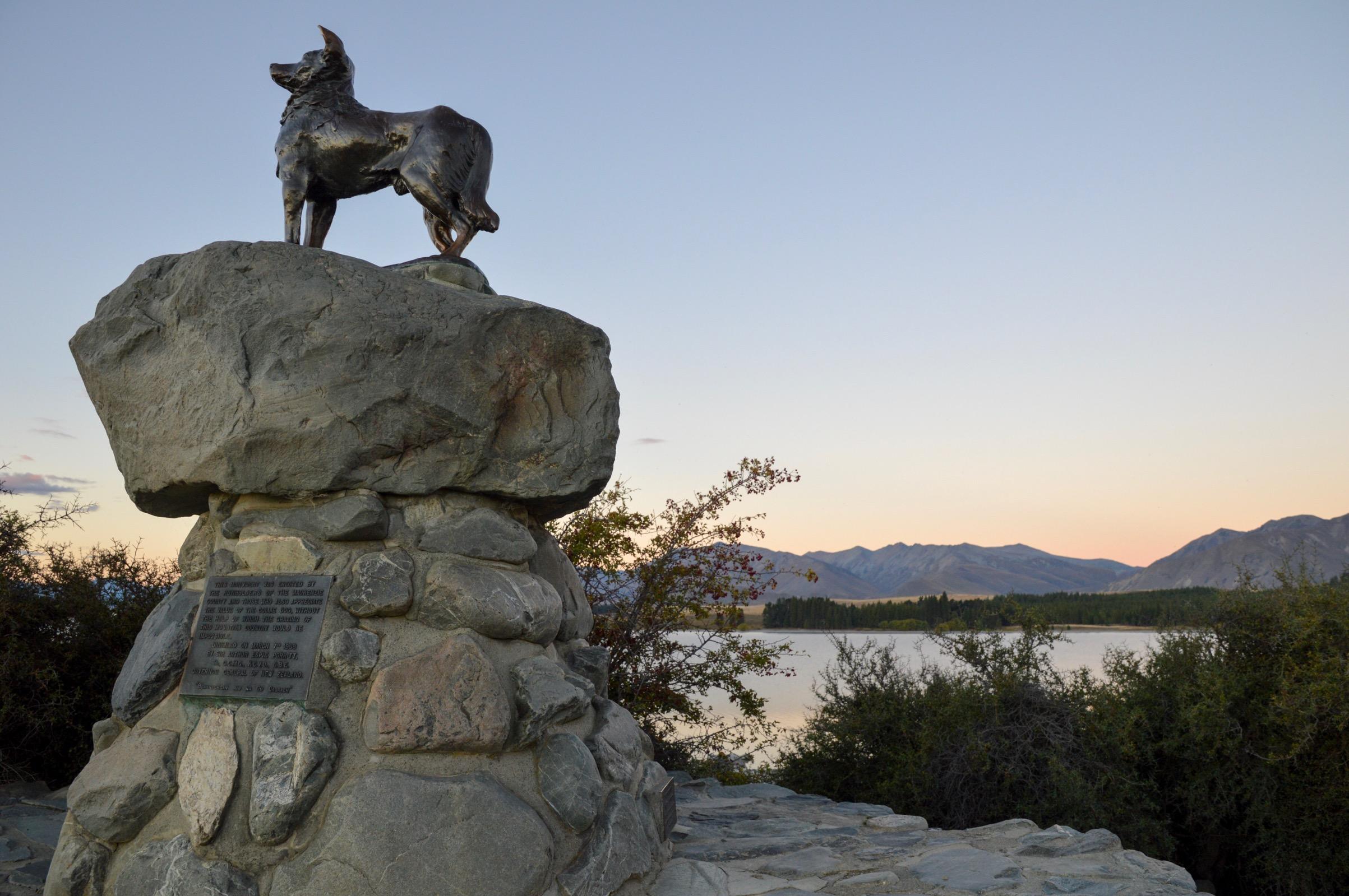 Mackenzie Sheepdog Statue, Lake Tekapo, New Zealand