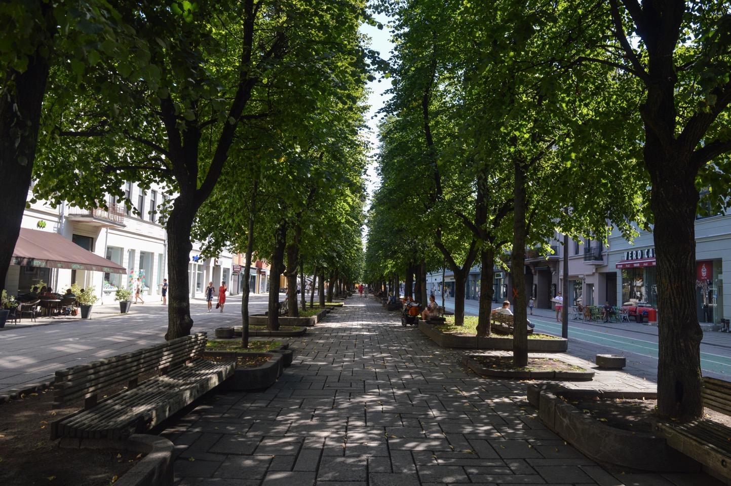 Laisvės alėja, Kaunas, Lithuania