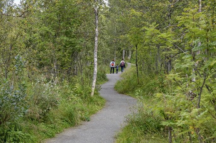 Path, Prestvannet Lake, Tromso, Norway