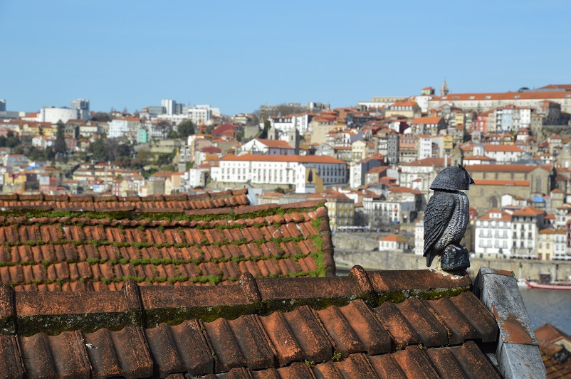 A small sculpture of an owl perched on a red-tiled roof with a view of Porto in the background